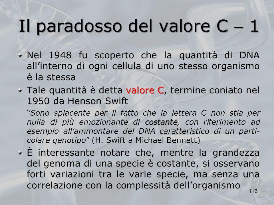 Il paradosso del valore C 1 Nel 1948 fu scoperto che la quantità di DNA allinterno di ogni cellula di uno stesso organismo è la stessa valore C Tale q