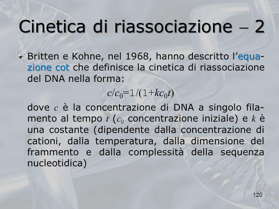 Cinetica di riassociazione 2 equa zionecot Britten e Kohne, nel 1968, hanno descritto lequa- zione cot che definisce la cinetica di riassociazione del