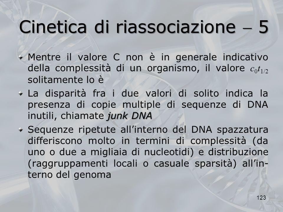 Cinetica di riassociazione 5 Mentre il valore C non è in generale indicativo della complessità di un organismo, il valore c 0 t 1/2 solitamente lo è j