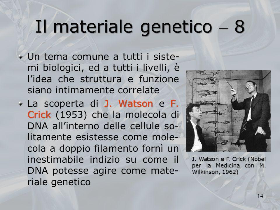 Il materiale genetico 8 Un tema comune a tutti i siste- mi biologici, ed a tutti i livelli, è lidea che struttura e funzione siano intimamente correla