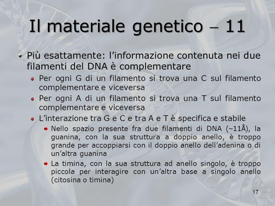 Il materiale genetico 11 Più esattamente: linformazione contenuta nei due filamenti del DNA è complementare Per ogni G di un filamento si trova una C
