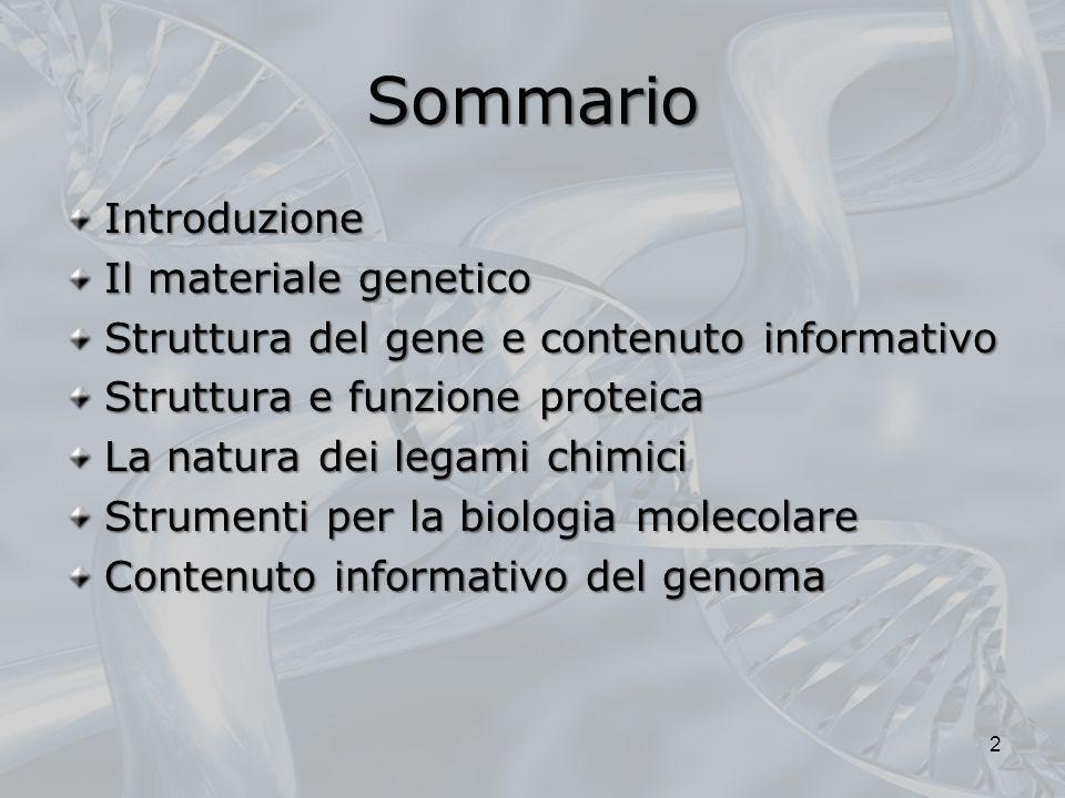 Sommario Introduzione Il materiale genetico Struttura del gene e contenuto informativo Struttura e funzione proteica La natura dei legami chimici Stru