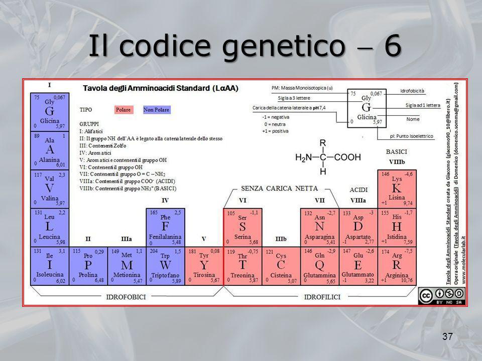 Il codice genetico 6 37
