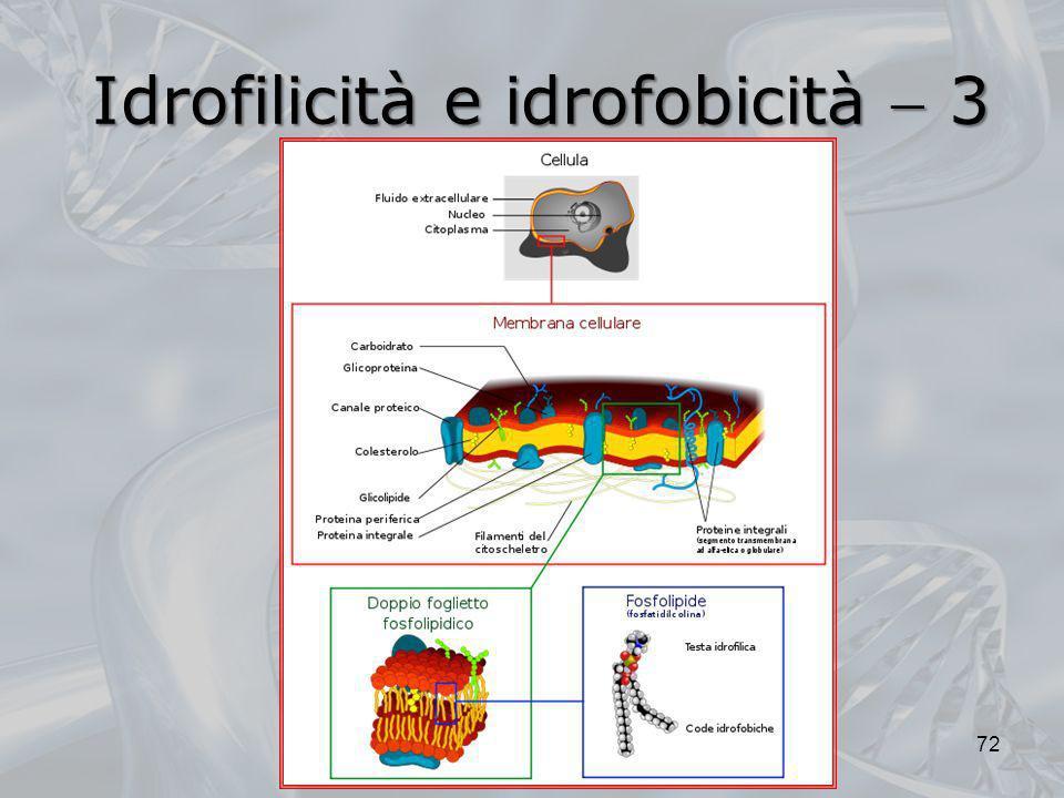 Idrofilicità e idrofobicità 3 72