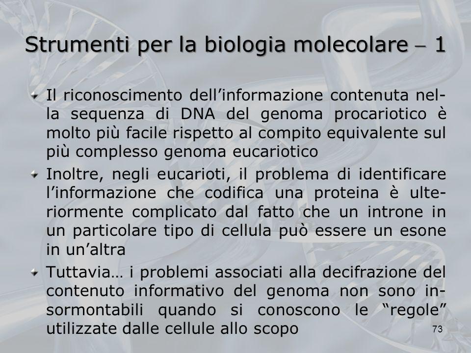 Strumenti per la biologia molecolare 1 Il riconoscimento dellinformazione contenuta nel- la sequenza di DNA del genoma procariotico è molto più facile