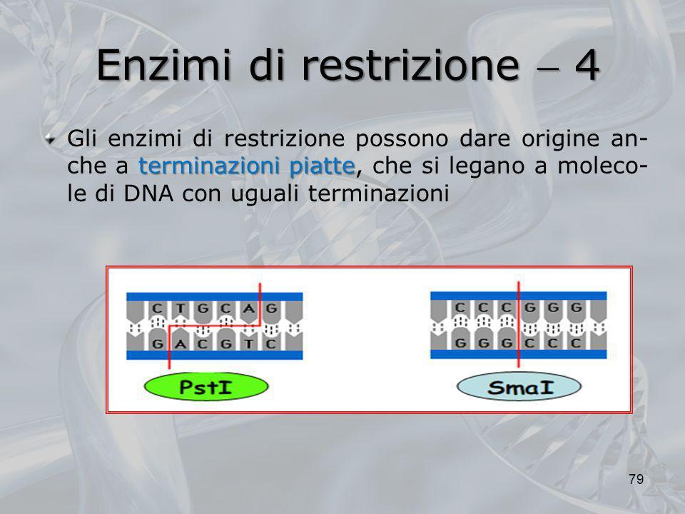 Enzimi di restrizione 4 terminazioni piatte Gli enzimi di restrizione possono dare origine an- che a terminazioni piatte, che si legano a moleco- le d
