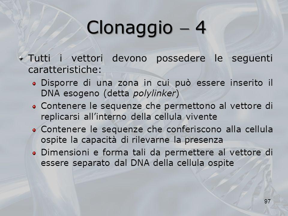 Clonaggio 4 Tutti i vettori devono possedere le seguenti caratteristiche: polylinker Disporre di una zona in cui può essere inserito il DNA esogeno (d
