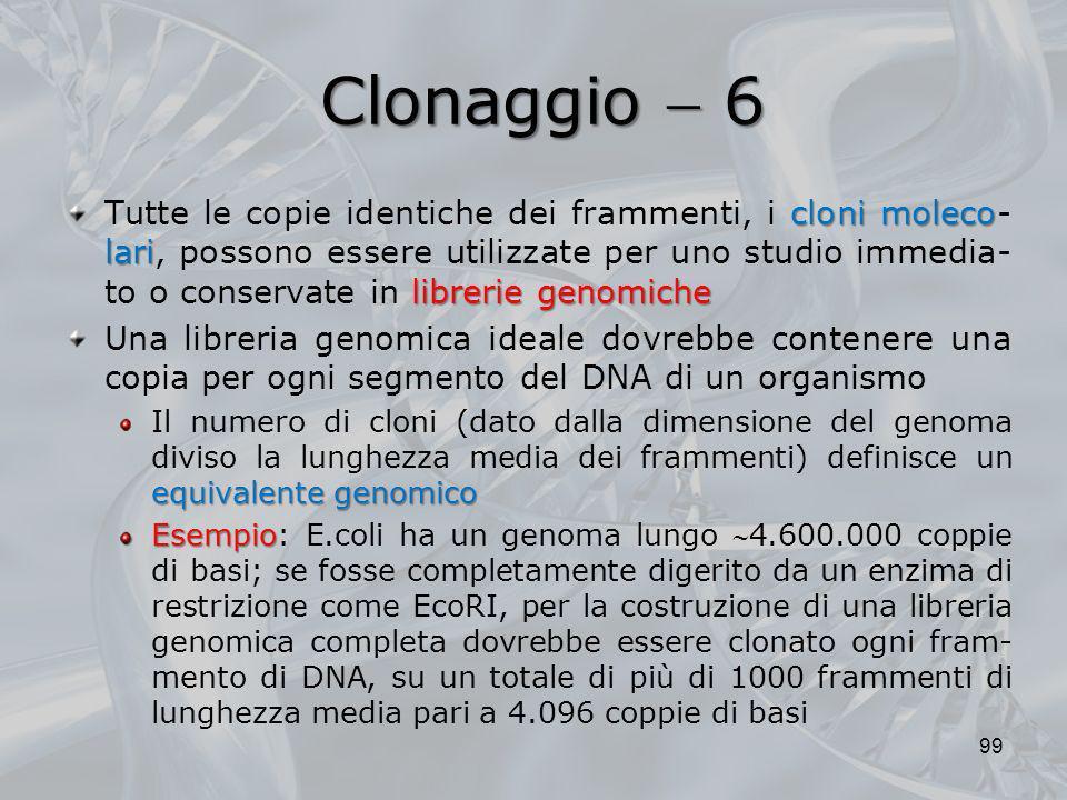 Clonaggio 6 cloni moleco lari librerie genomiche Tutte le copie identiche dei frammenti, i cloni moleco- lari, possono essere utilizzate per uno studi