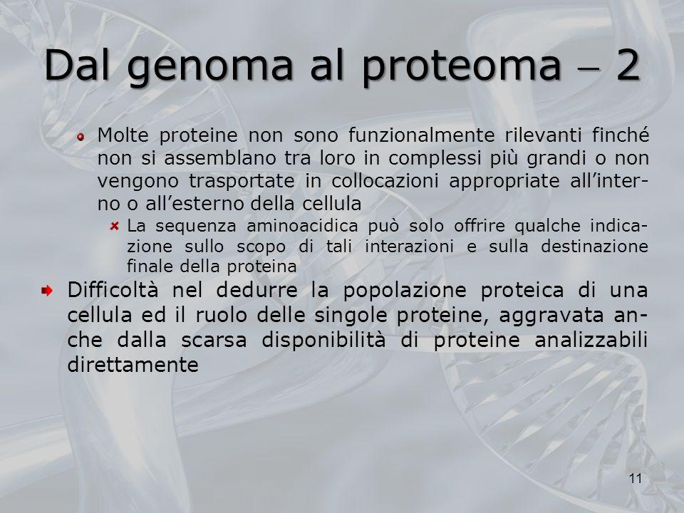 Dal genoma al proteoma 2 Molte proteine non sono funzionalmente rilevanti finché non si assemblano tra loro in complessi più grandi o non vengono tras