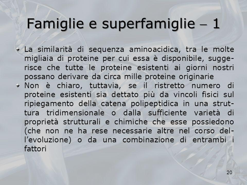 Famiglie e superfamiglie 1 La similarità di sequenza aminoacidica, tra le molte migliaia di proteine per cui essa è disponibile, sugge- risce che tutt