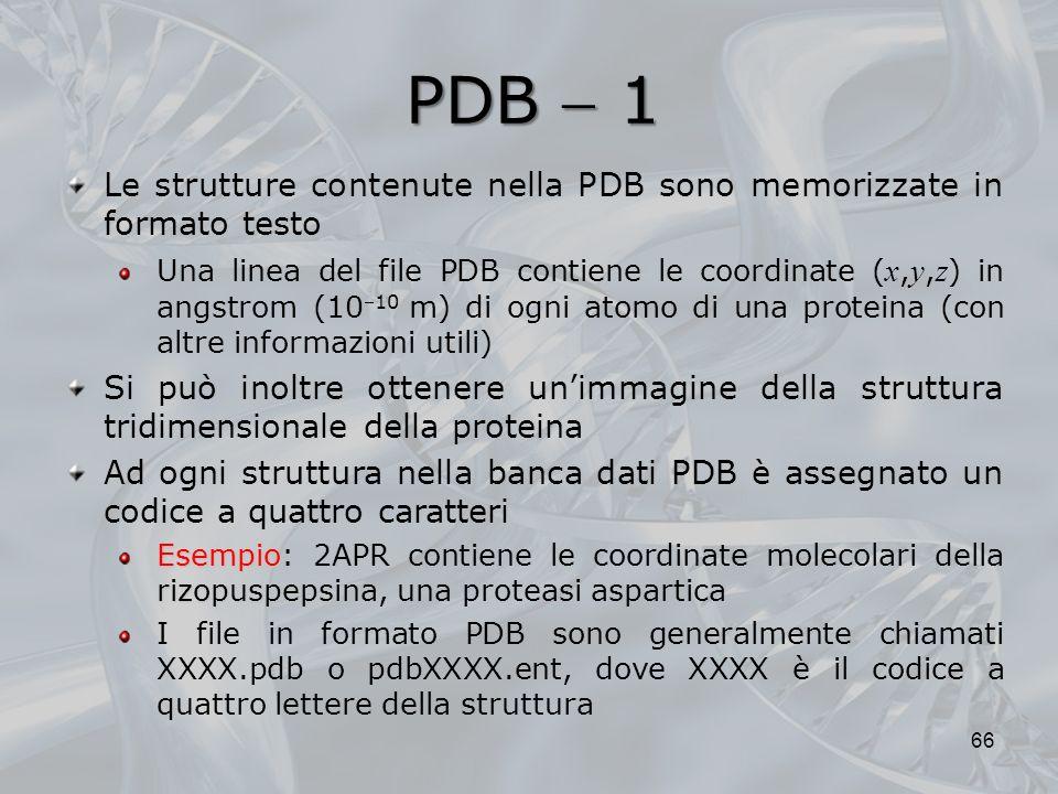 PDB 1 66 Le strutture contenute nella PDB sono memorizzate in formato testo Una linea del file PDB contiene le coordinate ( x, y, z ) in angstrom (101
