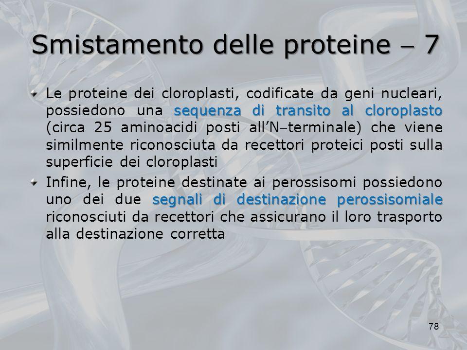 Smistamento delle proteine 7 sequenza di transito al cloroplasto Le proteine dei cloroplasti, codificate da geni nucleari, possiedono una sequenza di
