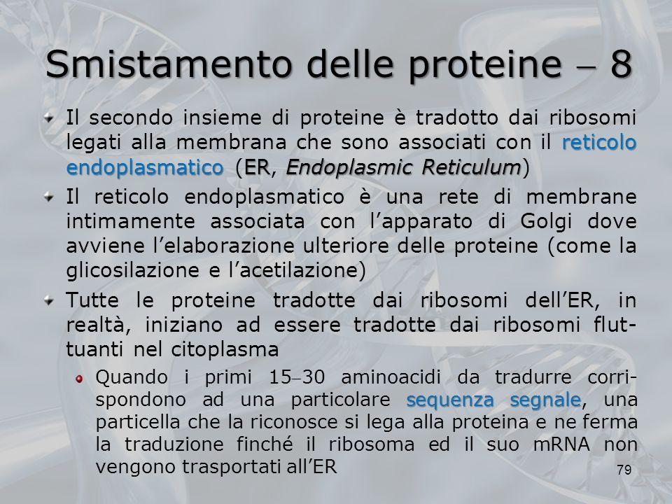 Smistamento delle proteine 8 reticolo endoplasmaticoEREndoplasmic Reticulum Il secondo insieme di proteine è tradotto dai ribosomi legati alla membran
