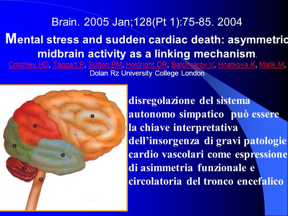 Brain. 2005 Jan;128(Pt 1):75-85. 2004 M ental stress and sudden cardiac death: asymmetric midbrain activity as a linking mechanism. Critchley HD, Tagg