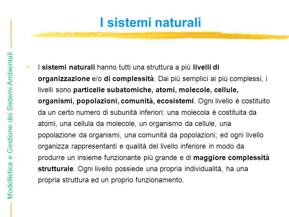 Modellistica e Gestione dei Sistemi Ambientali I sistemi naturali I sistemi naturali hanno tutti una struttura a più livelli di organizzazione e/o di complessità.
