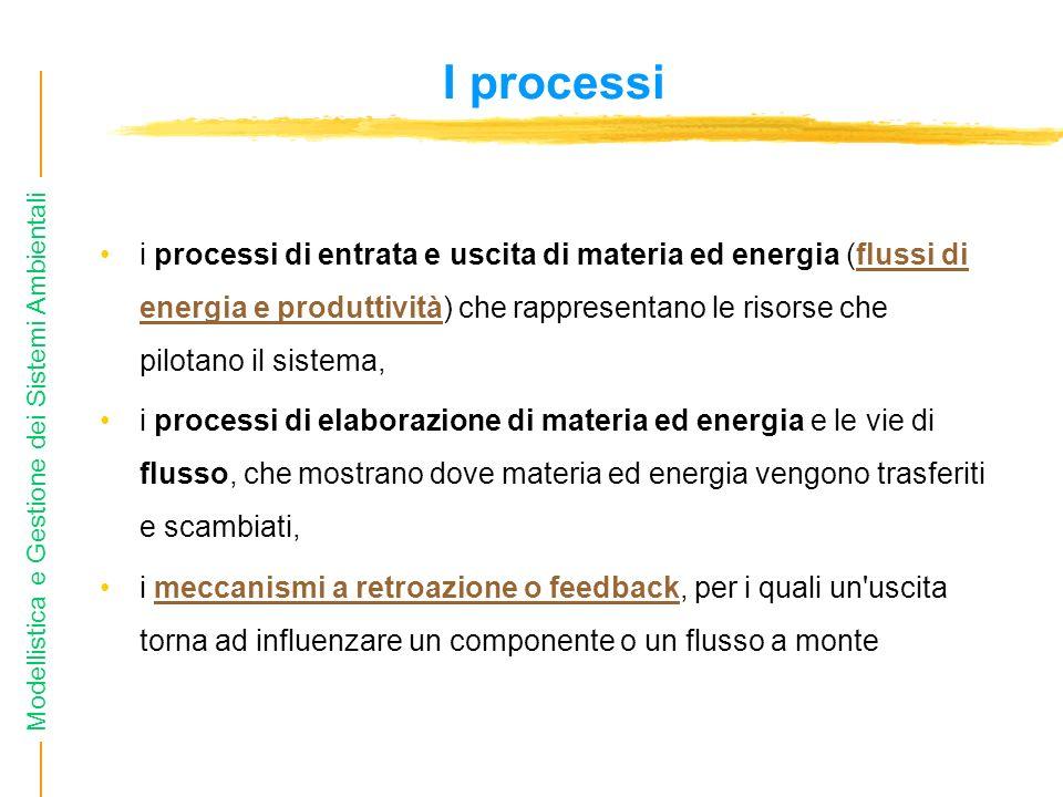 I processi i processi di entrata e uscita di materia ed energia (flussi di energia e produttività) che rappresentano le risorse che pilotano il sistema,flussi di energia e produttività i processi di elaborazione di materia ed energia e le vie di flusso, che mostrano dove materia ed energia vengono trasferiti e scambiati, i meccanismi a retroazione o feedback, per i quali un uscita torna ad influenzare un componente o un flusso a montemeccanismi a retroazione o feedback