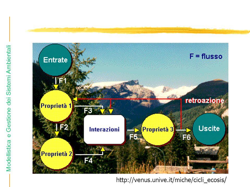 Modellistica e Gestione dei Sistemi Ambientali http://venus.unive.it/miche/cicli_ecosis /