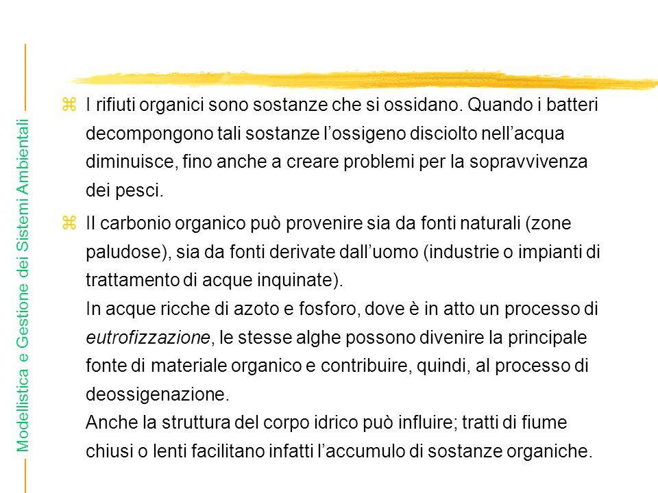 Modellistica e Gestione dei Sistemi Ambientali I rifiuti organici sono sostanze che si ossidano. Quando i batteri decompongono tali sostanze lossigeno