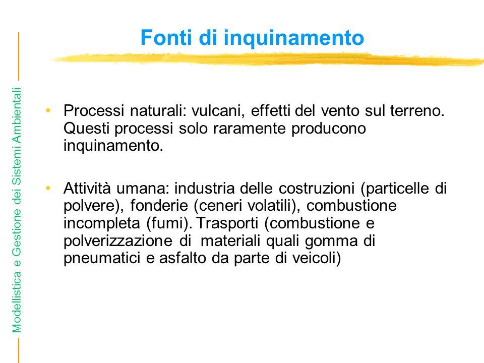 Modellistica e Gestione dei Sistemi Ambientali Fonti di inquinamento Processi naturali: vulcani, effetti del vento sul terreno. Questi processi solo r