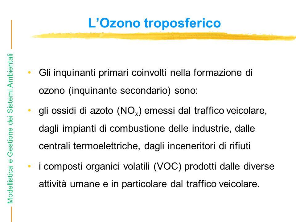 Modellistica e Gestione dei Sistemi Ambientali LOzono troposferico Gli inquinanti primari coinvolti nella formazione di ozono (inquinante secondario)