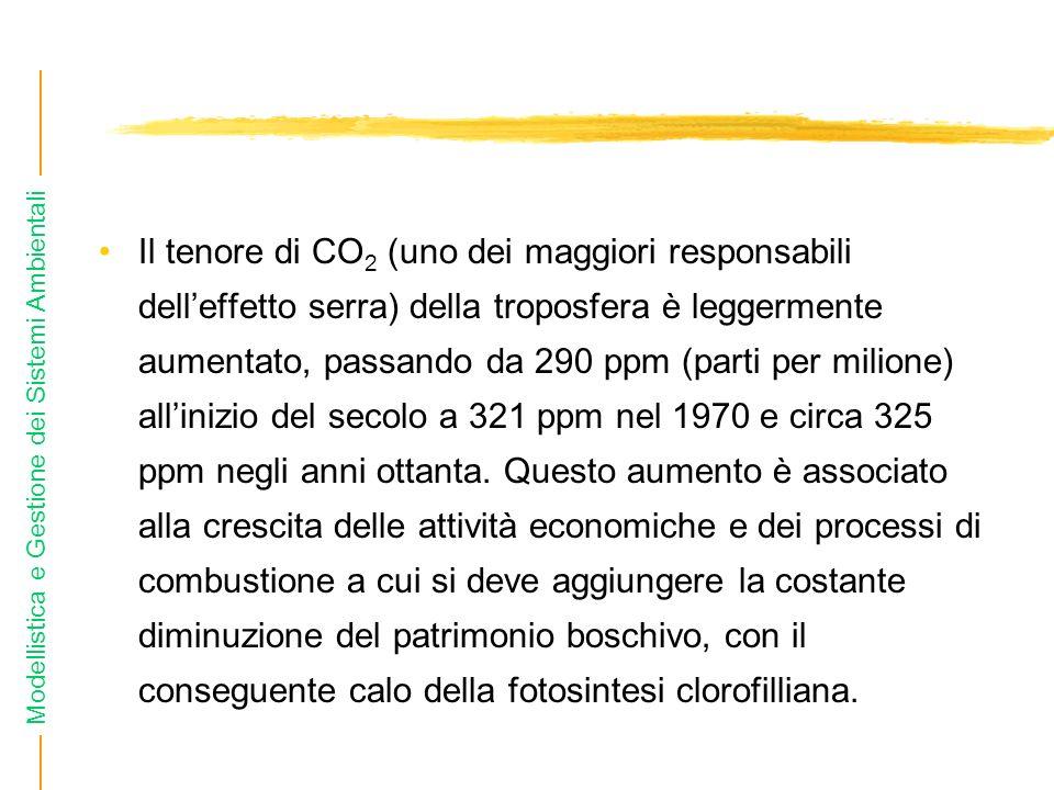 Modellistica e Gestione dei Sistemi Ambientali Il tenore di CO 2 (uno dei maggiori responsabili delleffetto serra) della troposfera è leggermente aume