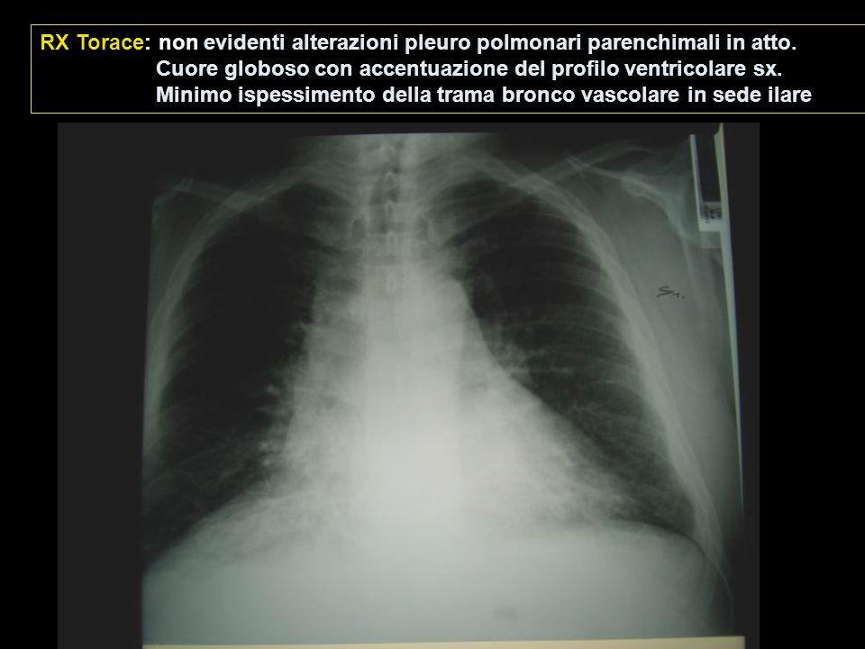 RX Torace: non evidenti alterazioni pleuro polmonari parenchimali in atto.