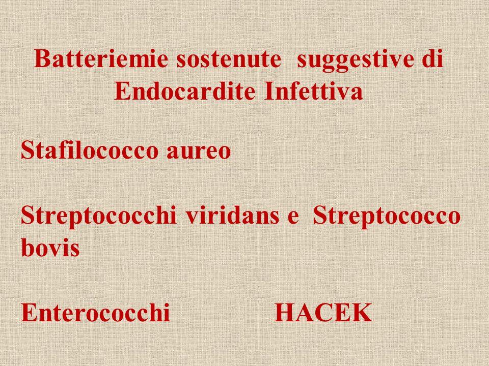 Stafilococco aureo Streptococchi viridans e Streptococco bovis Enterococchi HACEK Batteriemie sostenute suggestive di Endocardite Infettiva