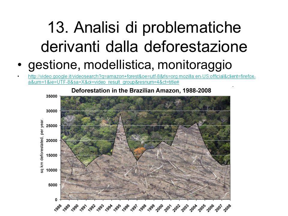 13. Analisi di problematiche derivanti dalla deforestazione gestione, modellistica, monitoraggio http://video.google.it/videosearch?q=amazon+forest&oe