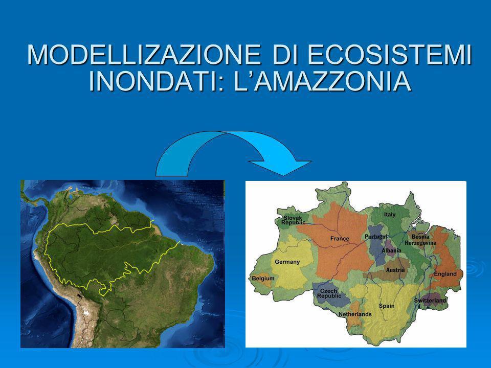 MODELLIZAZIONE DI ECOSISTEMI INONDATI: LAMAZZONIA