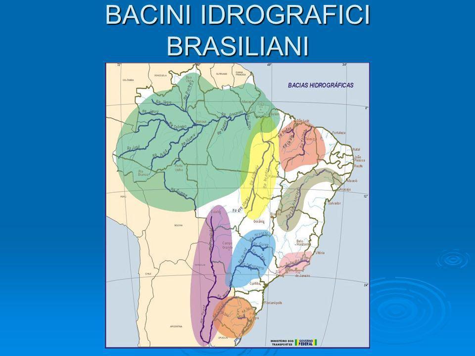Modello THMB (Terrestrial Hydrology Model with Biogeochemistry) 17,0020,0014,0711,70-49,67-3,83Tocantins at Tucuruı´56 24,001,004613,004566,00-47,33-6,33 Tocantins at Tocantino´polis55 34,004,004189,004042,00-47,42-7,42Tocantins at Carolina54 27,006,003724,003500,00-48,08-8,25Tocantins at Tupiratins53 13,0018,003042,002579,00-48,33-9,58 Tocantins at Miracema51 35,0021,002700,002225,00-48,42-10,75 Tocantins at Porto Nacional50 14,00-4,001936,002007,00-48,50-12,08Tocantins at Peixe49 27,006,00960,00904,00-48,08-13,58Tocantins at Sa˜o Felix45 YearsError (%) Simulated (m 3 s -1 ) Observed (m 3 s -1 )Longitude LatitudeNameStation ID Alcune simulazioni effettuate per il bacino di Tocantins