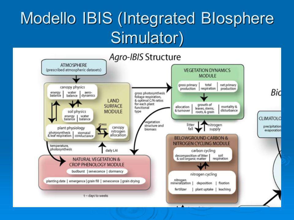 Modello IBIS (Integrated BIosphere Simulator) Esegue simulazioni sui vari ecosistemi terrestri in particolare sul ciclo dell'acqua, del carbonio e del