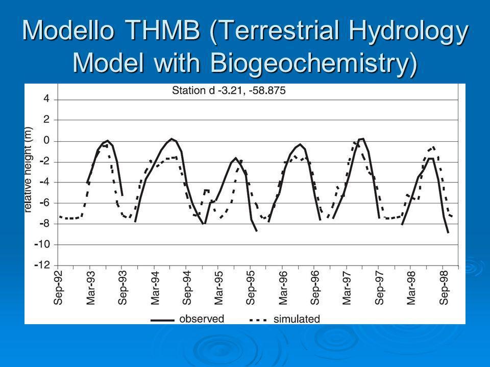 Modello THMB (Terrestrial Hydrology Model with Biogeochemistry)