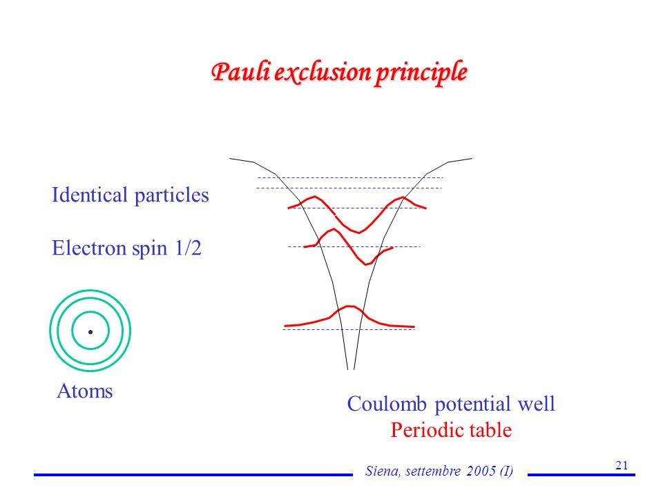 Siena, settembre 2005 (I) 21 Pauli exclusion principle Coulomb potential well Periodic table Identical particles Electron spin 1/2 Atoms