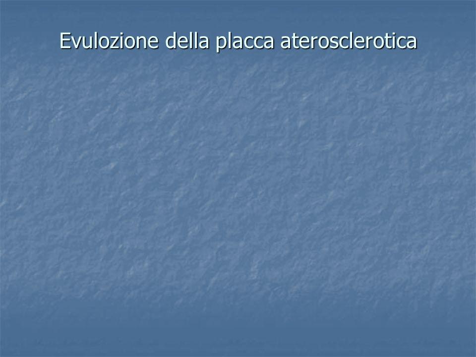 Evulozione della placca aterosclerotica