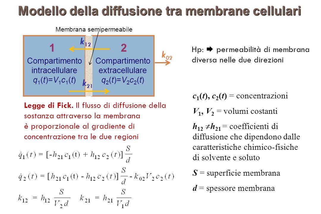 Modello della diffusione tra membrane cellulari Hp: permeabilità di membrana diversa nelle due direzioni c 1 (t), c 2 (t) = concentrazioni V 1, V 2 = volumi costanti h 12 h 21 = coefficienti di diffusione che dipendono dalle caratteristiche chimico-fisiche di solvente e soluto S = superficie membrana d = spessore membrana Membrana semipermeabile k21k21 k12k12 Compartimento intracellulare q 1 (t)=V 1 c 1 (t) Compartimento extracellulare q 2 (t)=V 2 c 2 (t) 12 k 02 k 12 k 21 Legge di Fick.