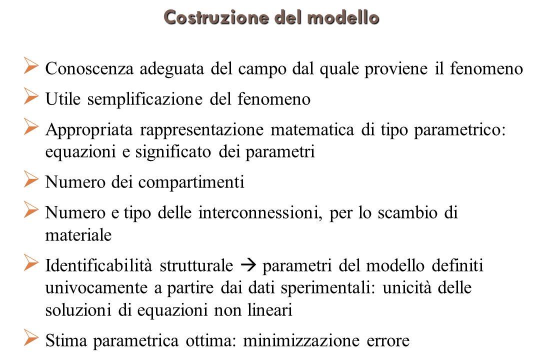 Costruzione del modello Conoscenza adeguata del campo dal quale proviene il fenomeno Utile semplificazione del fenomeno Appropriata rappresentazione matematica di tipo parametrico: equazioni e significato dei parametri Numero dei compartimenti Numero e tipo delle interconnessioni, per lo scambio di materiale Identificabilità strutturale parametri del modello definiti univocamente a partire dai dati sperimentali: unicità delle soluzioni di equazioni non lineari Stima parametrica ottima: minimizzazione errore