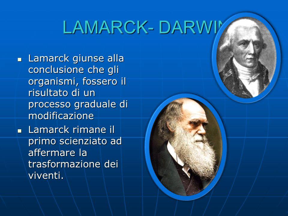 LAMARCK- DARWIN LAMARCK- DARWIN Lamarck giunse alla conclusione che gli organismi, fossero il risultato di un processo graduale di modificazione Lamar