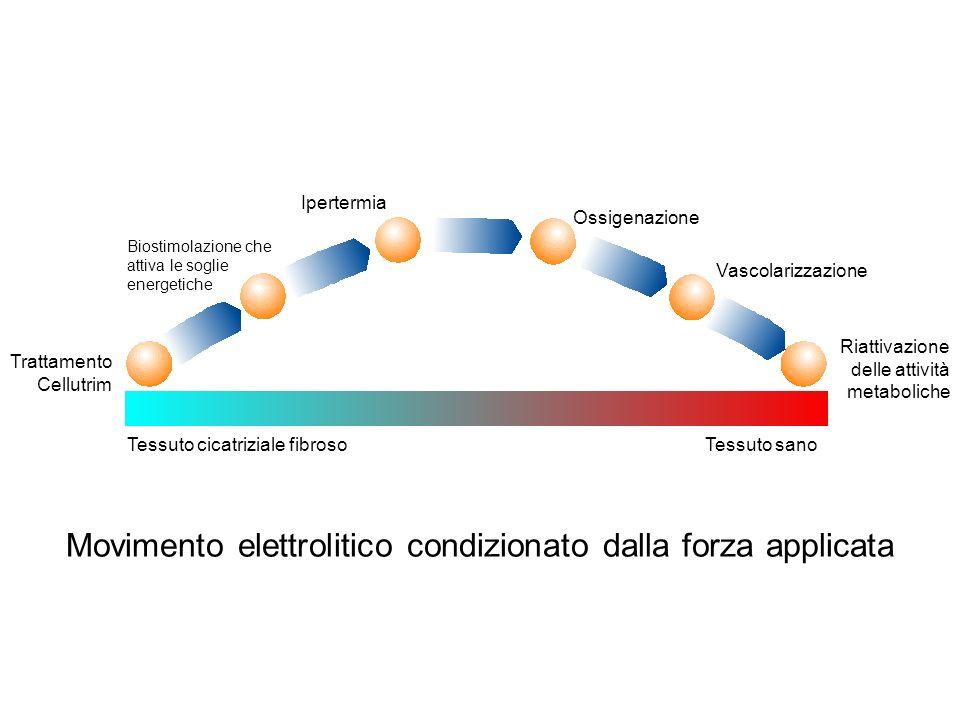 Il condensatore ++++++ ------ Cariche elettriche Zona di deposito delle cariche elettriche materiale Isolante Piastra metallica Il principio del condensatore