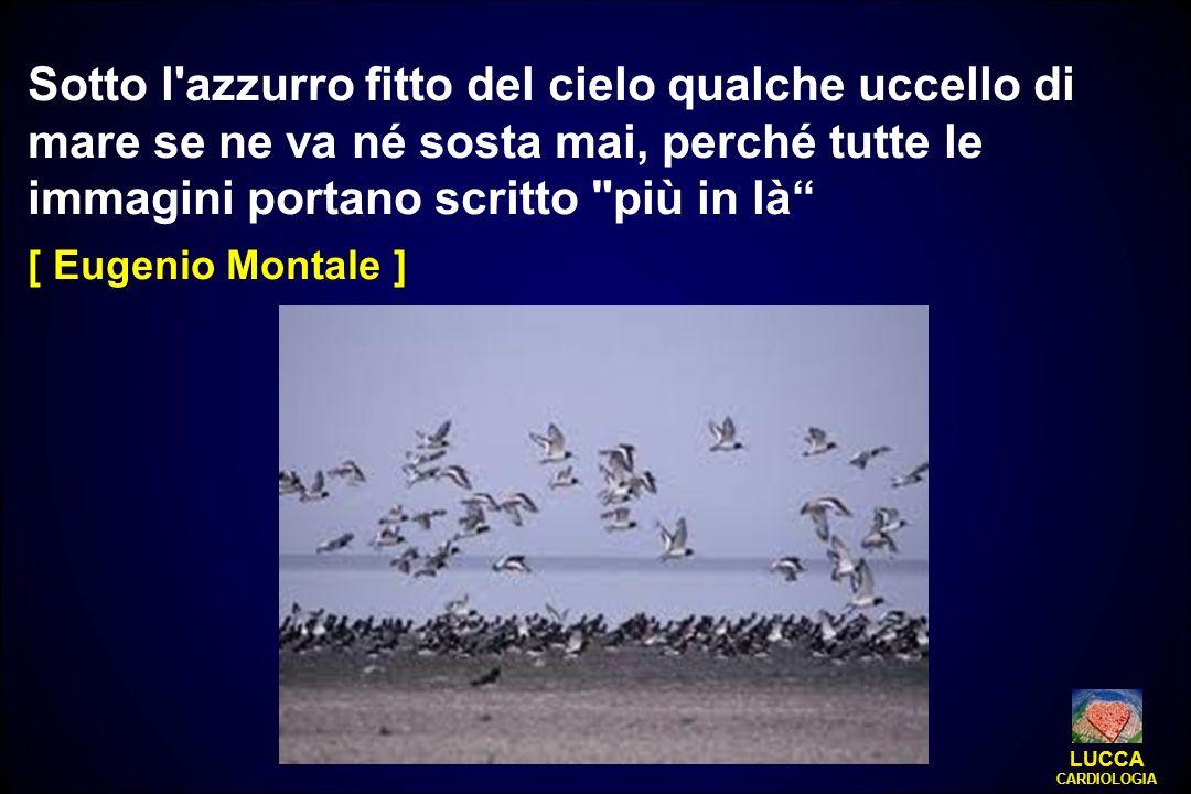 Sotto l'azzurro fitto del cielo qualche uccello di mare se ne va né sosta mai, perché tutte le immagini portano scritto