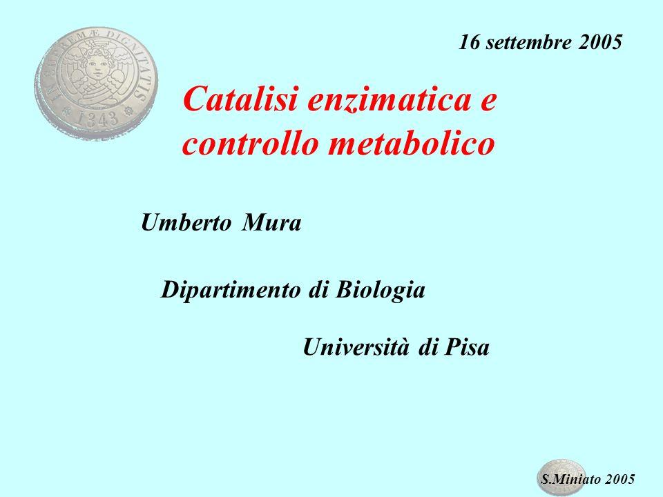 Catalisi enzimatica e controllo metabolico Umberto Mura 16 settembre 2005 Dipartimento di Biologia Università di Pisa S.Miniato 2005