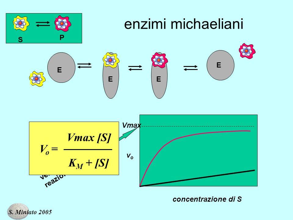 S P enzimi michaeliani concentrazione di S velocità massima di reazione vovo Vmax E EE E K M + [S] V o = Vmax [S] S. Miniato 2005