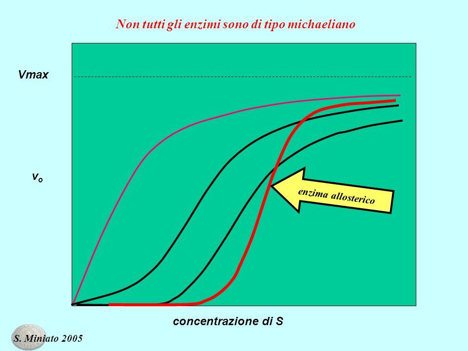 Non tutti gli enzimi sono di tipo michaeliano vovo concentrazione di S Vmax enzima allosterico S. Miniato 2005