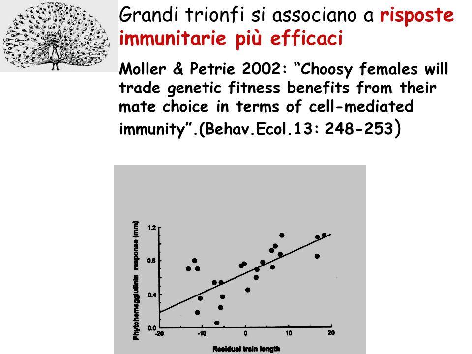 Good Genes: la sopravvivenza della prole è correlata con lespressione del tratto paterno, la coda del pavone (Petrie 1994, Nature) come il repertorio