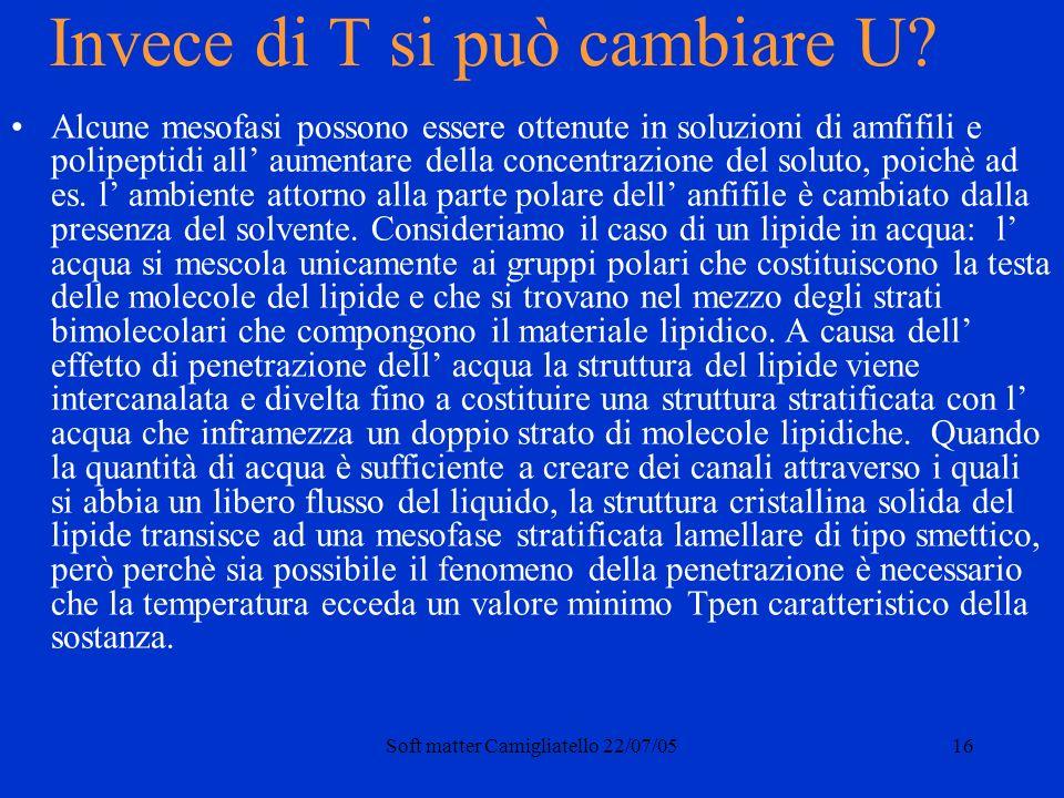 Soft matter Camigliatello 22/07/0516 Invece di T si può cambiare U.