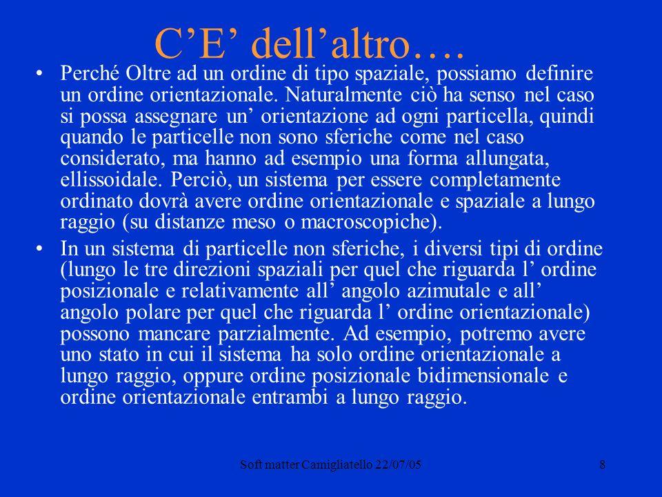 Soft matter Camigliatello 22/07/058 CE dellaltro….