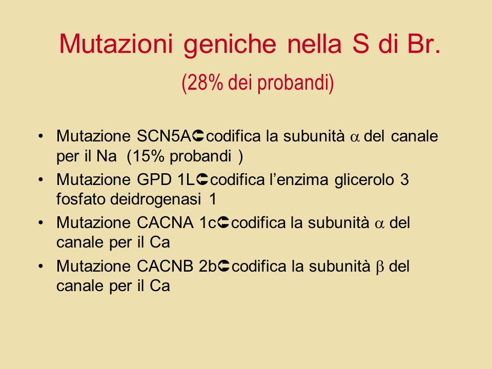 Mutazioni geniche nella S di Br. Mutazione SCN5A codifica la subunità del canale per il Na (15% probandi ) Mutazione GPD 1L codifica lenzima glicerolo