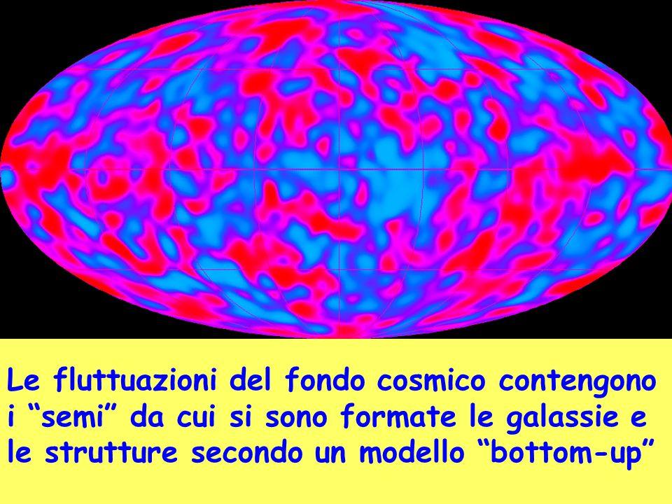 Le fluttuazioni del fondo cosmico contengono i semi da cui si sono formate le galassie e le strutture secondo un modello bottom-up