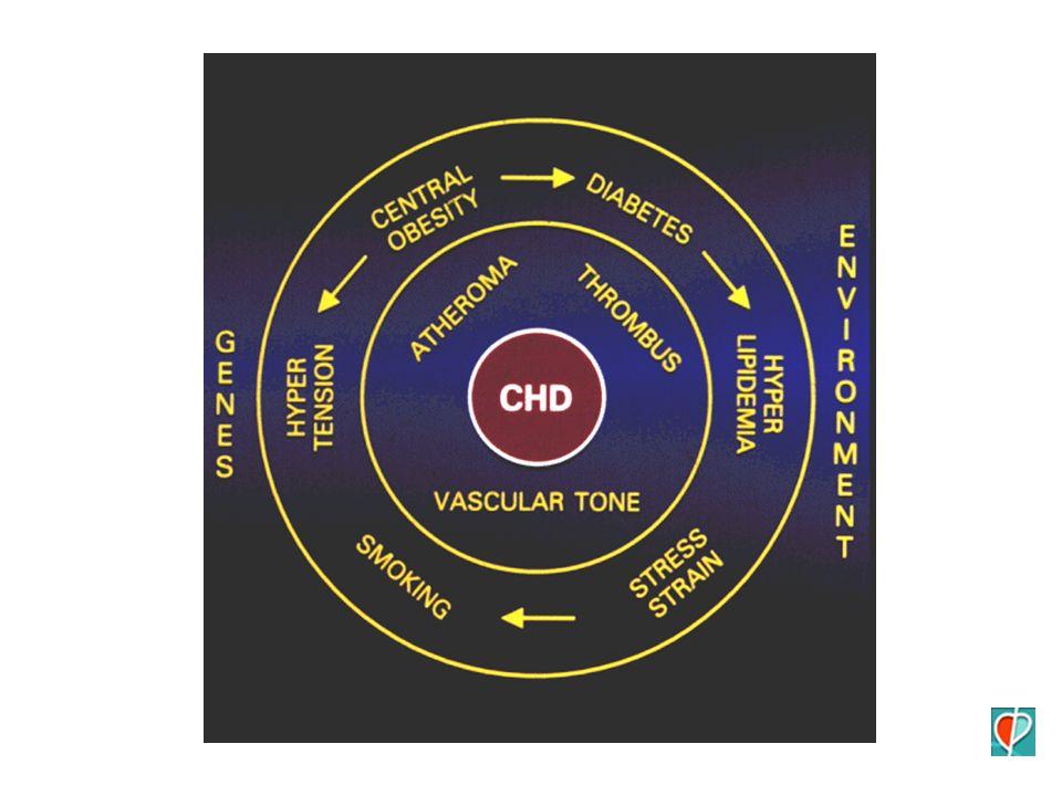 STRUMENTI Telemetria Valutazione funzionale ECO ECG-S HOLTER Tests provocativi Cardiologia nucleare Coronarogr.