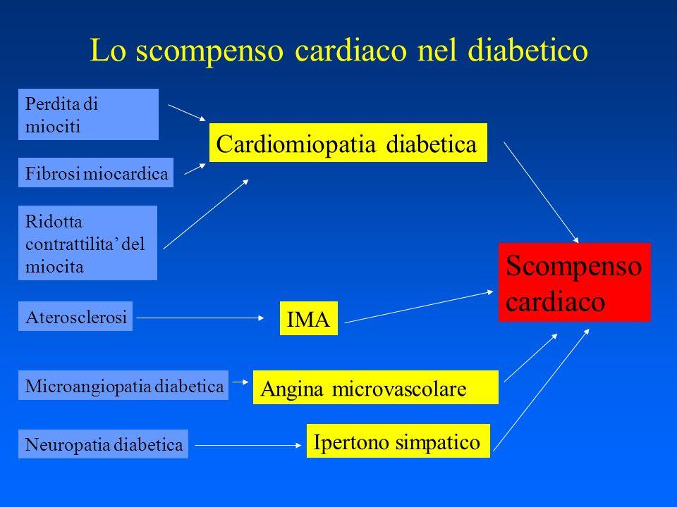 Lo scompenso cardiaco nel diabetico Perdita di miociti Fibrosi miocardica Ridotta contrattilita del miocita Cardiomiopatia diabetica Aterosclerosi IMA