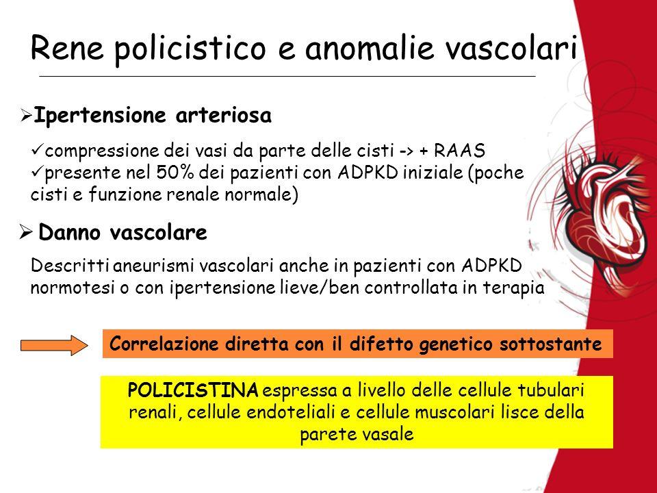 Rene policistico e anomalie vascolari Ipertensione arteriosa compressione dei vasi da parte delle cisti -> + RAAS presente nel 50% dei pazienti con AD